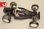 Tamiya Kumamon DT02 Buggy
