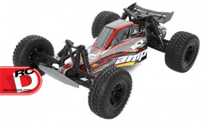 ECX - AMP 2wd Monster Truck and Desert Buggy