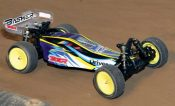 RC Buggy Review: HobbyKing Basher BZ 222
