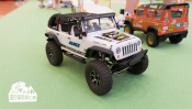 rcMart presents Hong Kong's First Indoor Scale Crawler Competition