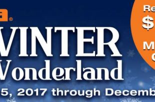 winter-wonderland-rebate-main