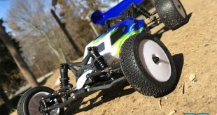 Losi Mini-B 1/16 2WD Ready To Run Buggy Review